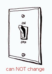 Light Switch on -- can NOT change